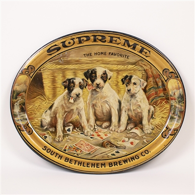 South Bethlehem Supreme Puppy Playing Card Tray